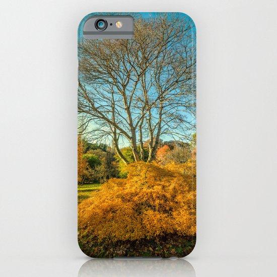 Autumnal Garden iPhone & iPod Case