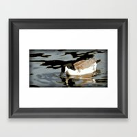 Canadian Geese Framed Art Print