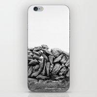 stonewalls iPhone & iPod Skin