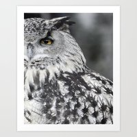 Owl EYE Art Print