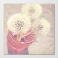 Sweet pom poms Canvas Print