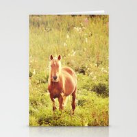 All the Pretty Horses Stationery Cards