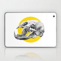 Bear Skull Laptop & iPad Skin