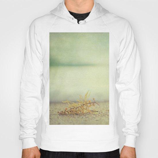 Seaweed  Hoody