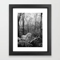 Rainforest No.7 Framed Art Print