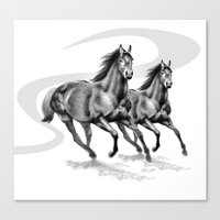 Cantering Canvas Print