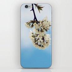 White & Blue iPhone & iPod Skin