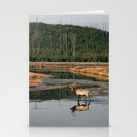 Bull Elk Crossing A Rive… Stationery Cards