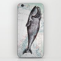 Whale in Antarctica iPhone & iPod Skin