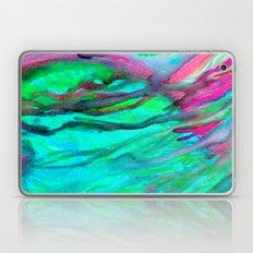 Spring 08 Laptop & iPad Skin