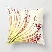 Pincushion Botanical Pri… Throw Pillow