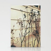 Branches Reflections Stationery Cards