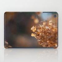 Gold iPad Case