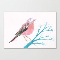 Chirpy Pink Bird Canvas Print