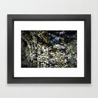 Mussels Framed Art Print
