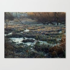 Is This What We've Seen All Along? Canvas Print
