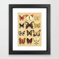 Neat Collection Framed Art Print