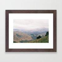 Resting sheep Framed Art Print