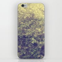 spring walk iPhone & iPod Skin