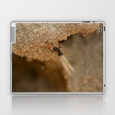 Romantic Ant Laptop & iPad Skin