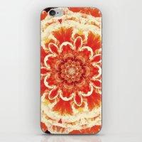 Serie Klai 005 iPhone & iPod Skin