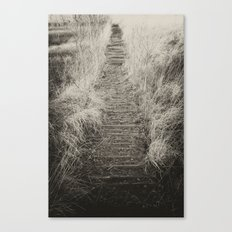 Way Of The Past Canvas Print