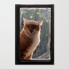 Ginger Cat waiting by the window (CW003) miaouuuuuu Canvas Print