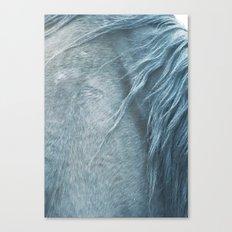Horse mane - fine art print n°3 Canvas Print