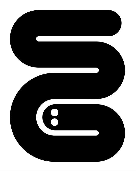 S6 SNAKE Art Print