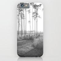 Everglades iPhone 6 Slim Case