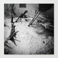 Inlet Stumps Canvas Print