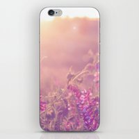 World Sun iPhone & iPod Skin