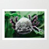 Axolotl Horst Art Print