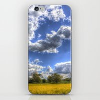 The Summer Field iPhone & iPod Skin