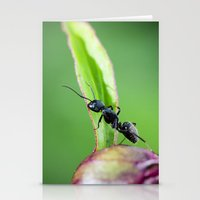 Ants Working On A Peony Flower Bud Macro Stationery Cards