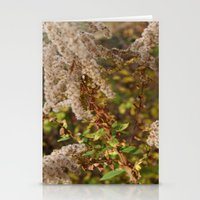 Plants Grow Stationery Cards