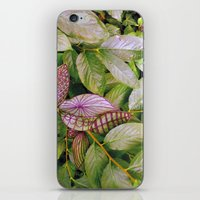 leaves evolved 2 iPhone & iPod Skin
