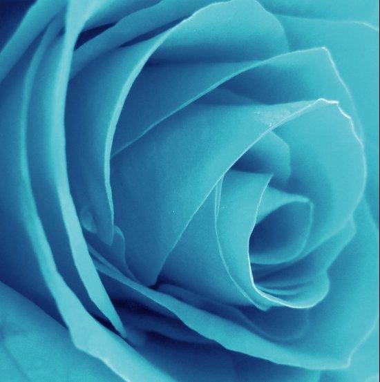 Cyan Rose Art Print