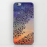 Murmuration iPhone & iPod Skin