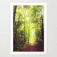 Collecting Light Art Print