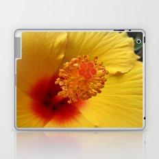 Hibiscus macro Laptop & iPad Skin