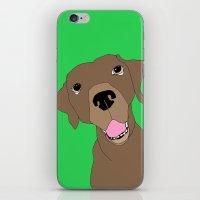 Dudley iPhone & iPod Skin
