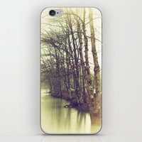 Natures Winter Slumber iPhone & iPod Skin