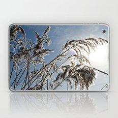 Winter Sun Laptop & iPad Skin