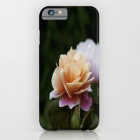 iPhone & iPod Case featuring Lily Pad Rose by Megan Quintal