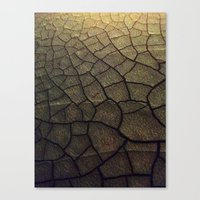 Some Fleshy Substance Canvas Print