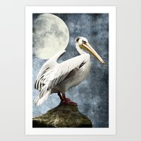 Pelican Night Art Print