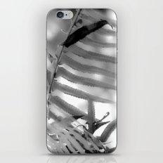 Fernly iPhone & iPod Skin