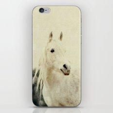 Lone Horse iPhone & iPod Skin