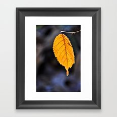 Orange Leaf Framed Art Print